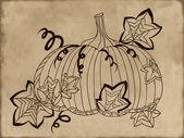 Hand-drawn pumpkin on vintage background. Vector illustration — Stock Vector