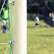 Foto Stock: Green football net, green grass