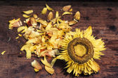 Old sunflower on wooden background — Foto Stock