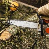 Hombre aserrando un tronco en su patio trasero — Foto de Stock