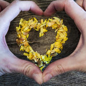 A heart from petals lying on a wooden table and hands — Stockfoto