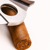 Cigar and cutter on a white background — Stock Photo