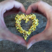 A heart from petals lying on a wooden table and hands — Foto Stock