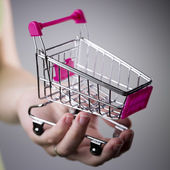 Pink shopping cart in woman hand — Stock Photo