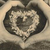 木製のテーブルと手に横になっている花びらから心 — ストック写真