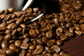 Coffee beans close-up 3 — Stock Photo