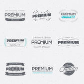 Vintage premium quality stickers and elements vector collection — Stock Vector