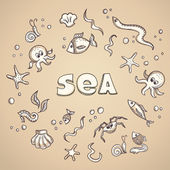 Sea life elements — Stock Vector
