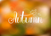 Abstract autumn background — Stock Vector