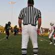 Stock Photo: Referee at Football game
