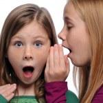 iki kız bir dedikodu paylaşımı — Stok fotoğraf