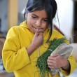 Little girl selling at the local market in Northern Peru — Stock Photo #13911307