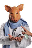 Swine Flu metaphore — Stock Photo
