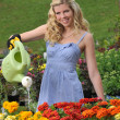 Young woman watering the garden — Stock Photo