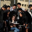 Stock Photo: Diverse Group of Students in College Campus