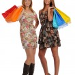 Two Beautiful Young Women with shopping bags — Stock Photo