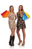 Two Beautiful Young Women with shopping bags — Стоковое фото