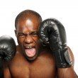 Young African American Boxer screaming — Stock Photo