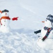 Two Snowmen - A lovely couple — Stock Photo #13261909