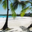 A beautiful tropical beach — Stock Photo