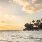 Sunset on the beach of caribbean sea — Stock Photo #43482599