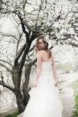 Beautiful bride in spring blossom — Foto de Stock