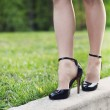 Woman legs and high heels — Stock Photo #46457329