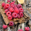 Raspberries on tree bark — Stock Photo