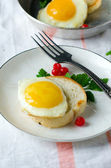 Sandwich with egg ,viburnum and parsley — Stock Photo