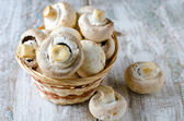 Champignons — Stock Photo