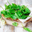 Fresh spinach and green onion — Stock Photo