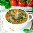 Mushroom soup with buckwheat — Foto Stock