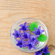 Flowers hyacinth in a bowl with water — Stock Photo