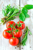 Fresh tomatoes , spinach and tarragon — Stock Photo