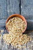 Buckwheat flakes — Zdjęcie stockowe