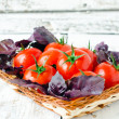 Fresh tomatoes cherry and Basil in a basket — Stock Photo #24740823