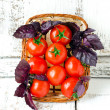 Fresh tomatoes cherry and Basil in a basket — Stock Photo