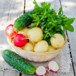 Fresh young potatoes , cucumbers , radishes and herbs - Stock Photo