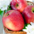 Fresh red apples in a basket — Stock Photo