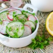 Salad from fresh cucumbers , radish and cabbage — Stock Photo #25219589