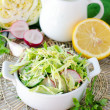 Salad from fresh cucumbers , radish and cabbage — Stock Photo #25219647