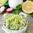Salad from fresh cucumbers , radish and cabbage — Stock Photo #25219695