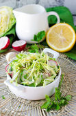 Salad from fresh cucumbers , radish and cabbage — Stock Photo