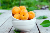 Fresh apricots in a bowl . selective focus — Stock Photo