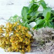 Dried St. John's wort, thyme and mint — Stock Photo