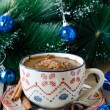 Christmas hot chocolate with spice — Stock Photo #35283963