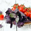 Fresh purple basil and cherry tomatoes — Stock Photo