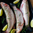 Fresh fish with lemon and rosemary — Stock Photo #35589281