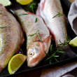 Stock Photo: Fresh fish with lemon and rosemary