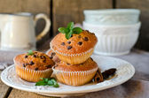 Muffins with chocolate drops — Stock Photo